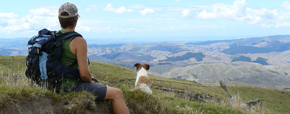 Walks and Holiday Accommodation Gisborne